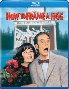 how_to_frame_a_figg_bluray