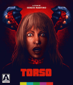 torso_arrow_video_bluray