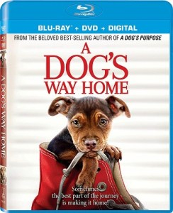 a_dogs_way_home_bluray