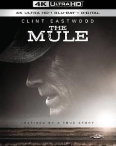 the_mule_4k