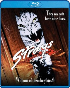 strays_bluray