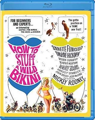 how_to_stuff_a_wild_bikini_bluray