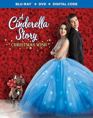 a_cinderella_story_christmas_wish_bluray