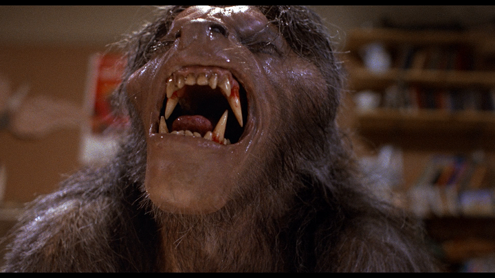 an_american_werewolf_in_london_limited_edition_5