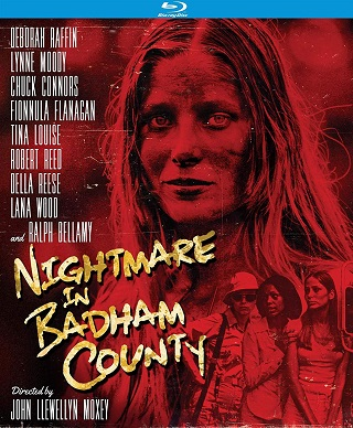 nightmare_in_badham_county_bluray