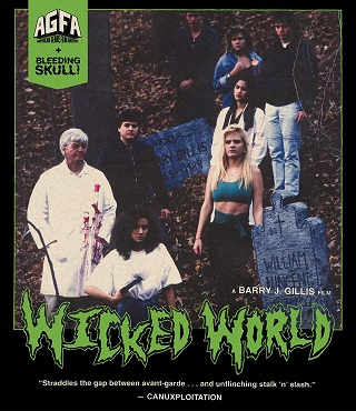wicked_world_bluray