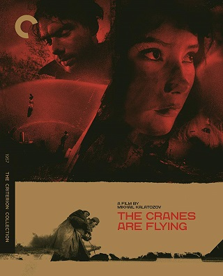 the_cranes_are_flying_bluray.jpg