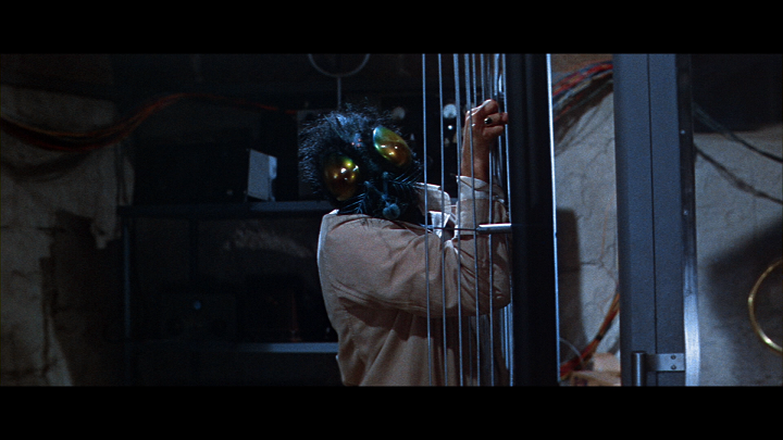 the_fly_1958_2019_bluray_2.png