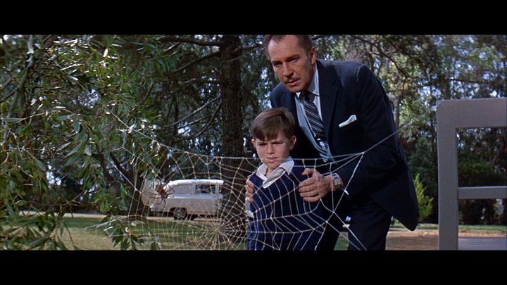 the_fly_1958_2019_bluray_4.png