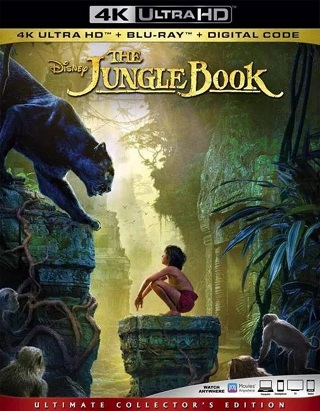 the_jungle_book_4k
