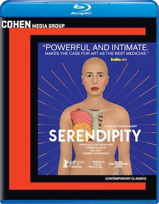 serendipity_2019_bluray