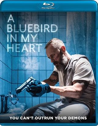 a_bluebird_in_my_heart_bluray