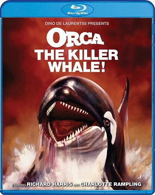 orca_the_killer_whale_bluray