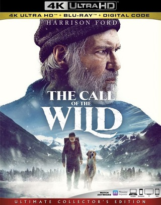 the_call_of_the_wild_4k