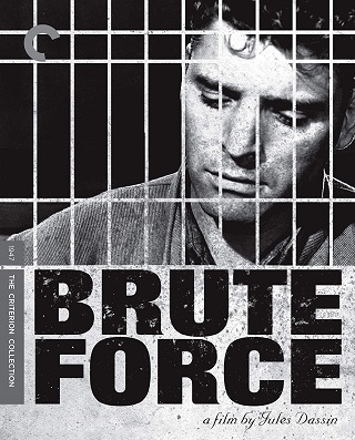 brute_force_criterion_bluray