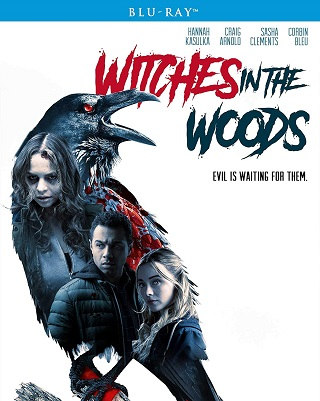 witches_in_the_woods_bluray